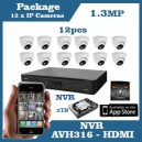 12 x IP Camera 1.3MP